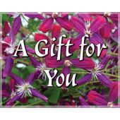 Gift Card: A Gift For You