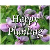 Gift Card: Happy Planting